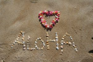 Read more about the article Basic Hawaiian For Truckers