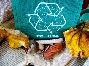 Read more about the article Department of Environmental Management Scales Back Recycled Water